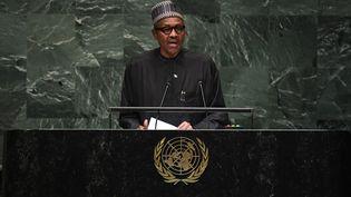 Le président du NigeriaMuhammadu Buharià l'Assemblée générale des Nations Unies à New York, le 25 septembre 2018. (TIMOTHY A. CLARY / AFP)