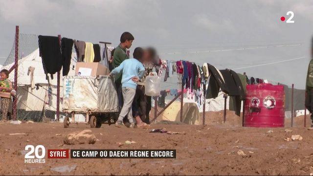 Syrie : Daech reconstitué derrière les barbelés
