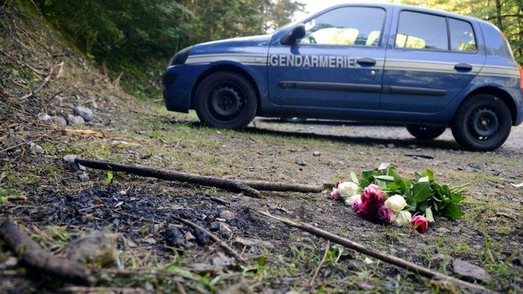 Un bouquet de roses sur les lieux du quadruple meurtre, à Chevaline (Haute-Savoie), le 8 septembre 2012. (PHILIPPE DESMAZES / AFP)
