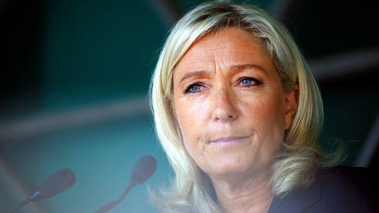 La présidente du Front national, Marine Le Pen, lors d'un meeting à Brachay (Haute-Marne), le 30 août 2014. (MAXPPP)