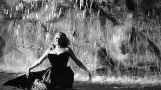 Anita Ekberg dans la Dolce Vita (1960)  (Kobal/The Picture Desk)