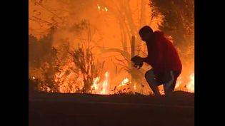 Capture d'écran de la vidéo où l'on voit un homme sauver un lapin des flammes, en Californie, le 6 décembre 2017. (CNN)