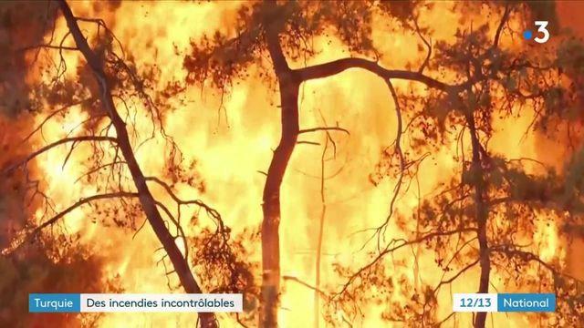 Turquie : de violents incendies brûlent des villages entiers