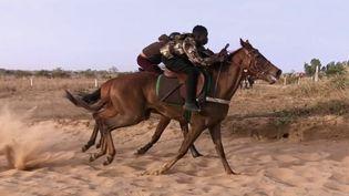 Les courses hippiques suscitent des vocations chez les jeunes Sénégalais. (CAPTURE ECRAN FRANCE 2)