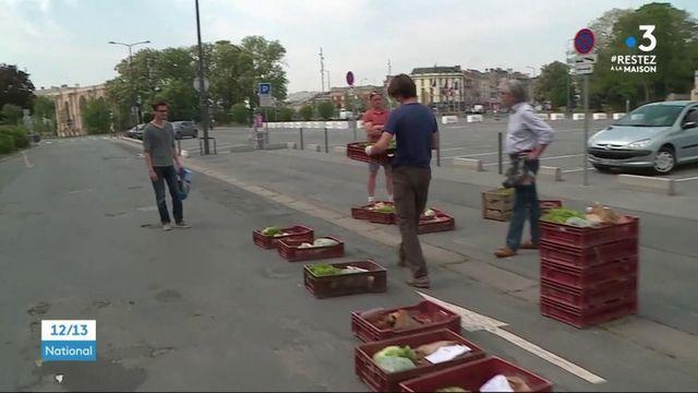 Reims : des maraîchers vendent leur production à la sauvette