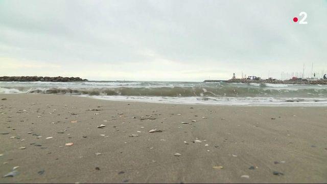 Tourisme : Palavas-les-Flots fait le plein de touristes venus prendre un grand bol d'air frais