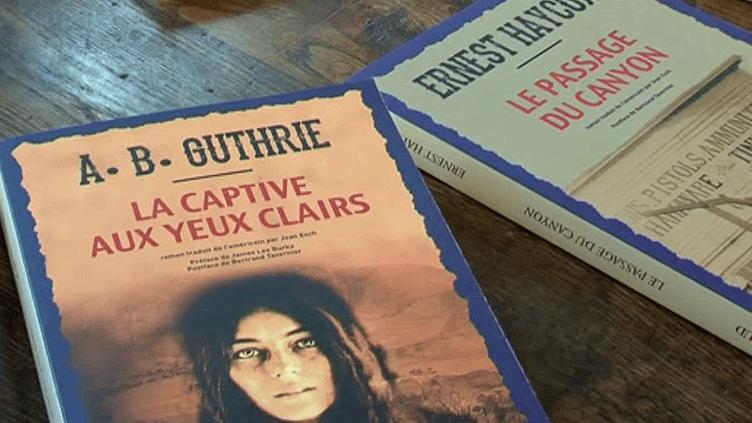 """""""L'Ouest, le vrai"""", la collection de romans de Bertrand Tavernier  (France3/Culturebox)"""