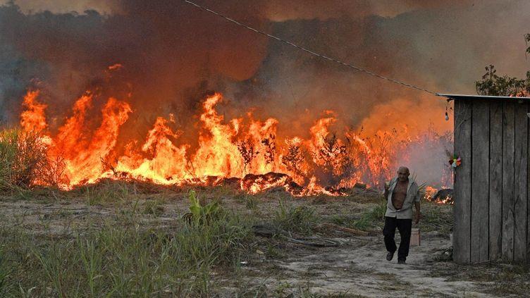 Un paysan brésilien met le feu à une parcelle de forêt autour de ses champs, le 15 août 2020 à Novo Progresso (Brésil). (CARL DE SOUZA / AFP)