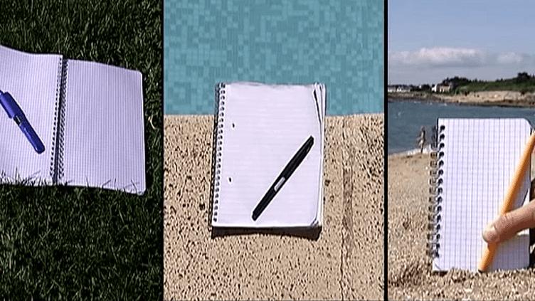 L'été est propice à l'écriture  (France 3)