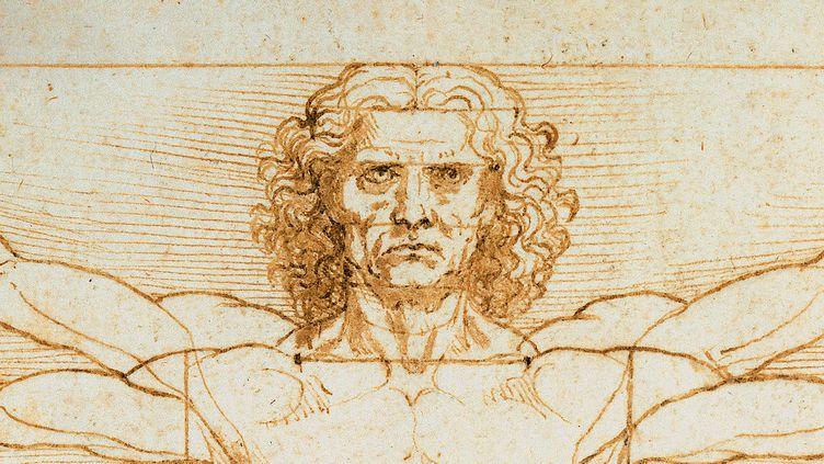 Détail de L'homme de Vitruve de Léonard de Vinci (Leemage/AFP)