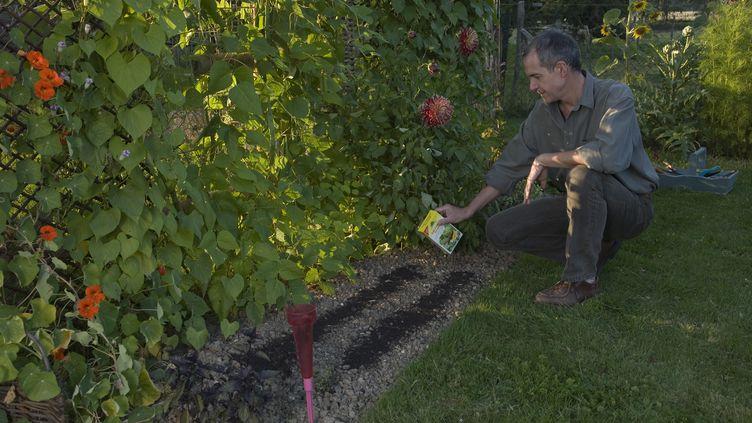 Illustration du jardinage sans pesticide - septembre 2007 (AFP)