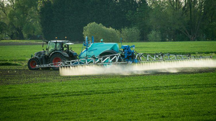 Un exploitant épand des pesticides dans un champ, le 9 mai 2016 à Fromelles, près de Lille (Nord). (DENIS CHARLET / AFP)