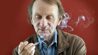 L'oeuvre de Michel Houellebecq récompensée par le Prix de la BnF 2015  (EFE/SIPA)