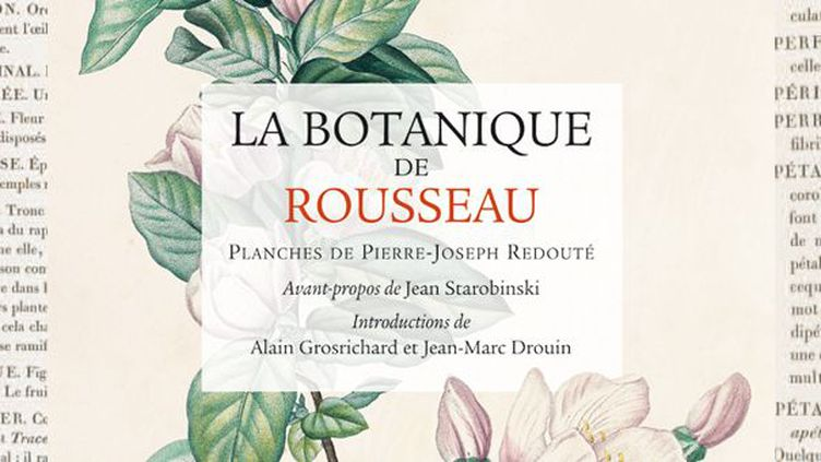 """""""La Botanique de Rousseau"""", Editions Puf, Collection Sources  (Culturebox)"""