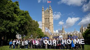Manifestations d'expatriés à Londres pour demander la garantie que leurs droits soient respectés malgré le Brexit, le 13 septembre. (TOLGA AKMEN / AFP)