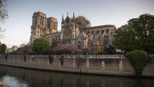 La cathédrale Notre-Dame de Paris le 17 avril 2019, deux jours après l'incendie qui a ravagé sa toiture. (ERIC FEFERBERG / AFP)