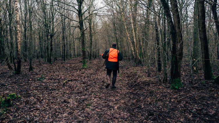 Une chasse au gros gibier dans une forêt de Seine-et-Marne, le 11 février 2019. (LAURENT LE CRABE / HANS LUCAS / AFP)