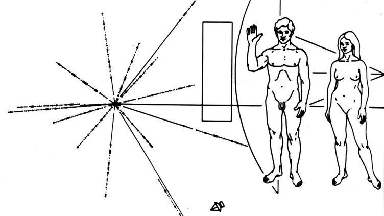 Aperçu de l'illustration placée dans les sondesPioneer 10 et 11.L'image était destinée à d'éventuels extraterrestres intelligents. Elle représente un homme et une femme nus, et plusieurs symboles qui renseignent sur l'origine des sondes. (AP / SIPA)