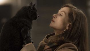 "Isabelle Huppert dans ""Elle""  (SBS Distribution)"
