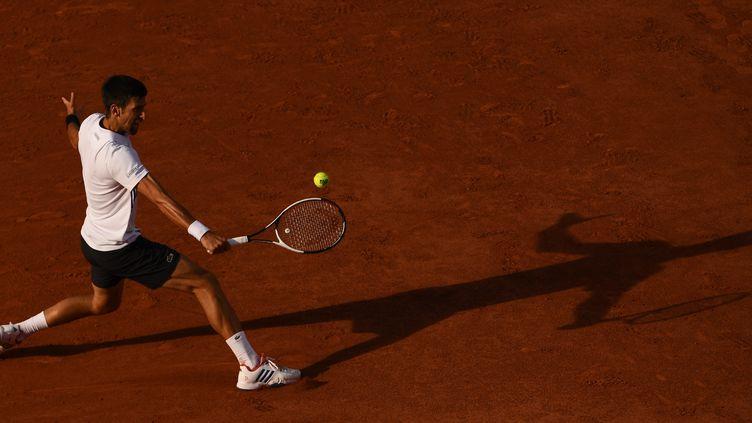Novak Djokovic, Roland-Garros 2017. (ALEXEY FILIPPOV / SPUTNIK)