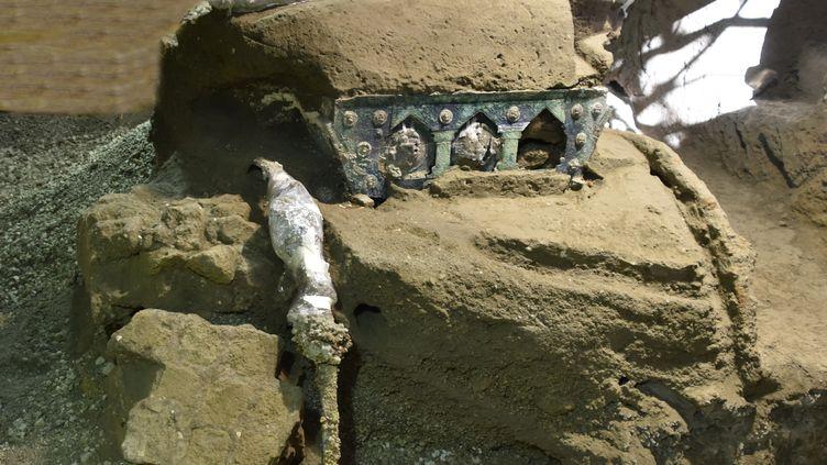 Un grand char de cérémonie a été découvert à quelques centaines de mètres au nord du parc archéologique de Pompéi (Italie). (POMPEI ARCHAEOLOGICAL PARK / VIA AFP)