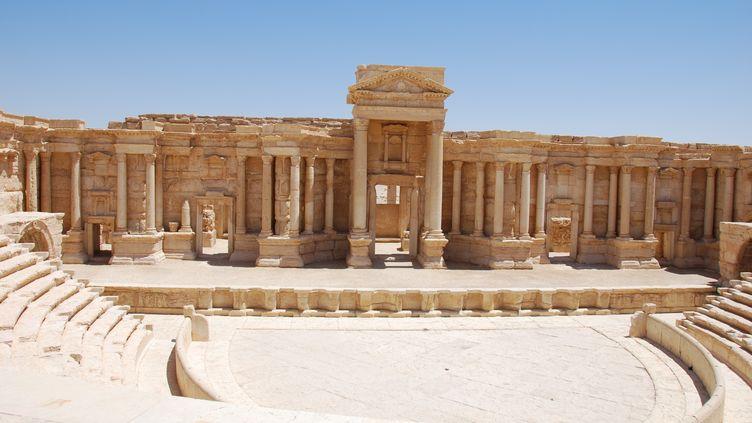 L'amphithéâtre de la cité antique de Palmyre, dans le désert syrien, le 3 juin 2009. (CHRIS MELZER / DPA / AFP)