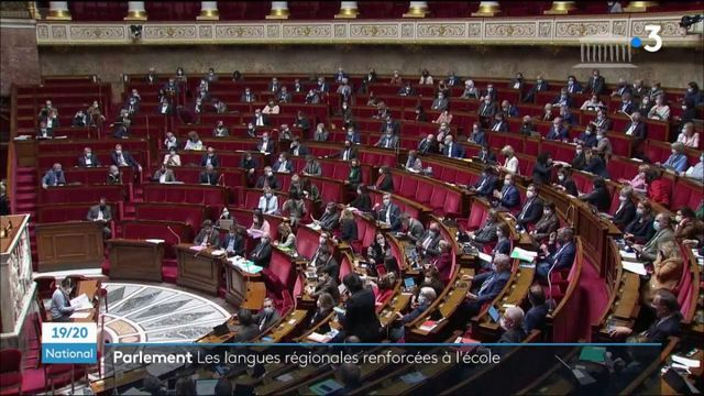 Éducation : l'enseignement en langue régionale dans le public voté à l'Assemblée nationale