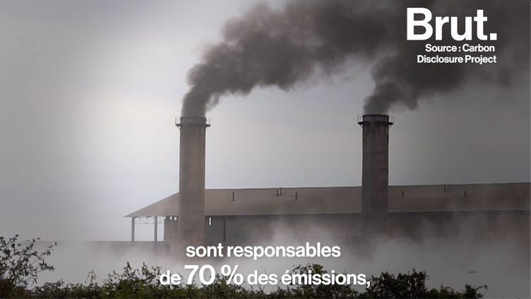 VIDEO. Loi climat : quid de la responsabilité des entreprises ? (BRUT)