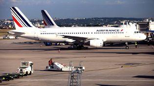 Des avions d'Air France sur le tarmac de l'aéroport d'Orly, en 2012. (STEPHANE FRANCES / ONLY FRANCE / AFP)