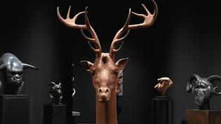 La tête de Girafe-Cerf créée par Mauro Corda  (France 3/ Culturebox)