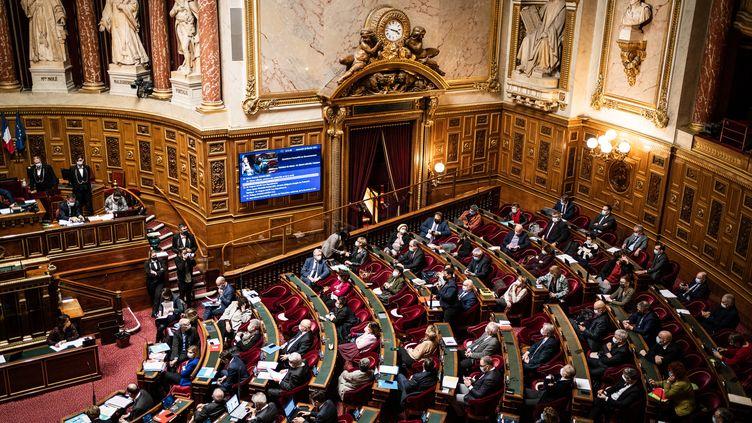 L'hémicycle du Sénat, le 10 février 2021 à Paris. (XOSE BOUZAS / HANS LUCAS / AFP)