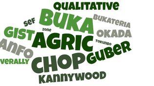 """Nuage de quelques mots nigérians qui ont intégré l'""""Oxford English Dictionnary"""" lors de sa dernière mise à jour en janvier 2020. (CODEUR)"""