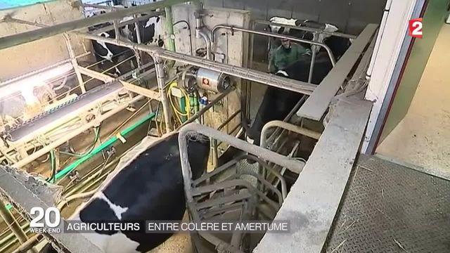 Témoignage : un éleveur breton explique la grogne
