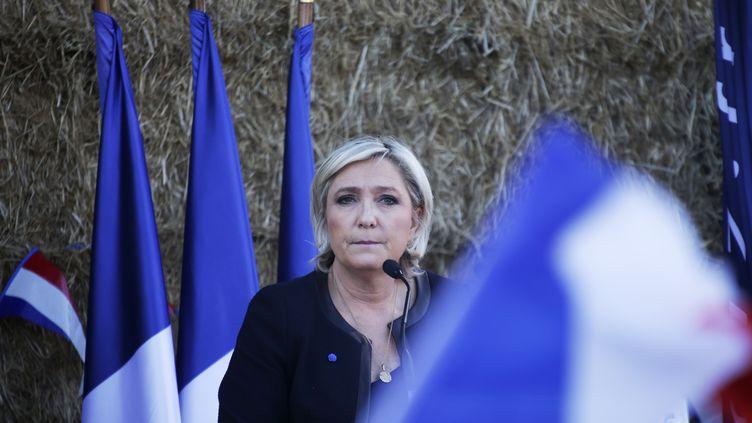 La candidate du Front national Marine Le Pen s'apprête à prononcer un discours, lors d'un meeting à Pageas (Haute-Vienne), le 13 avril 2017. (PASCAL LACHENAUD / AFP)