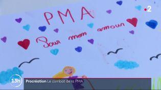 Le 13 Heures vous propose le témoignage d'une femme célibataire qui a eu deux enfants par PMA à l'étranger. L'adoption de cette loi en France serait pour elle un soulagement. (France 2)