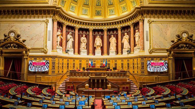 L'hémicycle du Sénat au Palais du Luxembourg à Paris, le 22 septembre 2020. (JEAN-FRANÇOIS FERNANDEZ / FRANCE-BLEU BESANÇON)
