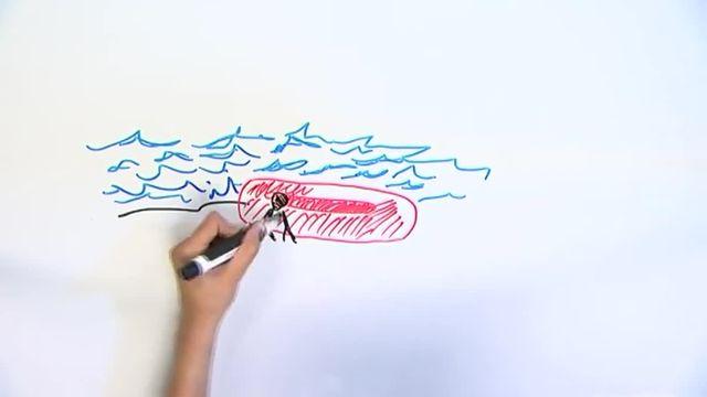 La rédaction de franceinfo a adapté en dessins le reportage de Doan Bui, journaliste au Nouvel Obs. Consacré aux migrants clandestin de l'Evros, il lui a valu le prix Albert-Londres 2013.