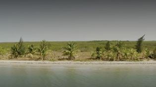 Au Sénégal, l'île de No Stress Island accueille de rares touristes sur un site protégé. Difficile d'accès, elle réserve aux courageux un petit coin de paradis inoubliable. (FRANCE 2)