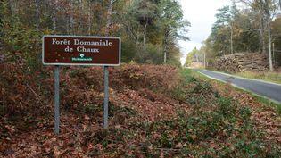 Forêt domaniale de Chaux dans le Jura. (MAXPPP)