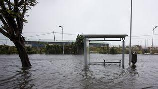 Pointe-a-Pitre, après le passage de l'ouragan Maria, le 19 septembre 2017. (CEDRICK ISHAM CALVADOS / AFP)