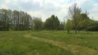 Valframbert dans l'Orne passe à l'éco tonte. (CAPTURE D'ÉCRAN FRANCE 3)
