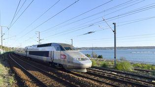Un TGV approche de Brest et passe devant le port du Moulin Blanc, le 28 novembre 2016. (MAXPPP)