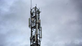 Une antenne de télécommunications à Saint-Martin-de-Seignanx (Landes), le 30 décembre 2020. (MARTIN NODA / HANS LUCAS)