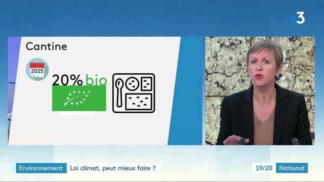 """Environnement : pourquoi la loi """"Climat et résilience"""" est-elle critiquée ?"""