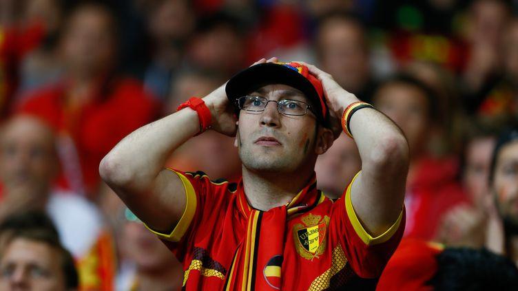 Enorme désillusion pour ce fan de la sélection belge dans le nouveau stade lyonnais... (EVREN ATALAY / ANADOLU AGENCY)