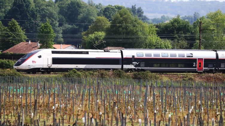 La nouvelle ligne LGV Paris-Bordeaux, le 29 juin 2017. (MAXPPP)
