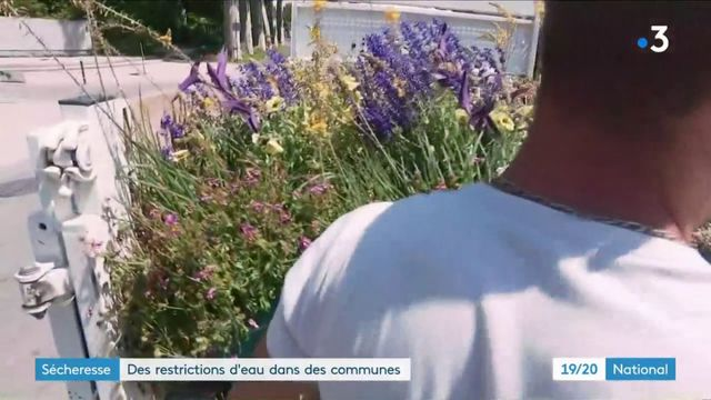 Restrictions d'eau dues à la sécheresse : Vendôme décide de stopper l'arrosage municipal des plantes et jardins