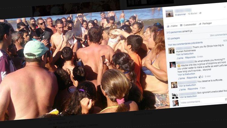Photo publiée sur Facebook le 10 février 2016 du dauphin franciscain tiré des eauxpar des touristes sur la plagede Santa Teresita à Buenos Aires (Argentine). (FACEBOOK)