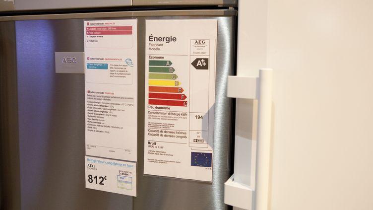 Des réfrigérateurs dans un magasin d'électroménager à Nogent-sur-Marne (Val-de-Marne), le 7 mars 2010. (J-C.&D. PRATT / PHOTONONSTOP / AFP)