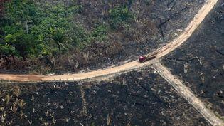 Une partie de la forêt brûlée, près de Boca do Acre au Brésil, le 24 août 2019. (LULA SAMPAIO / AFP)
